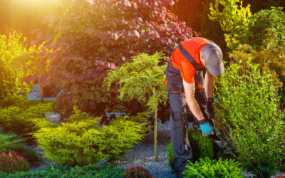 3 Ways Landscaping Helps Your Curb Appeal